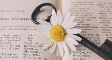source: Image by Susanne Jutzeler - https://pixabay.com/photos/key-old-flower-nostalgic-vintage-5105878/ [free for commercial use]